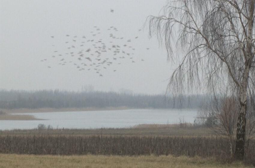 Jeziora zamiast wyrobisk pokopalnianych
